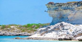 Fowl Cay 6
